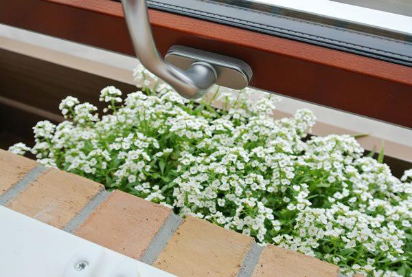 窓辺にはお花を楽しむプランターボックス...